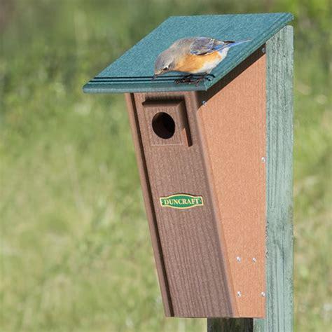 duncraft com duncraft bird safe peterson eco bluebird house