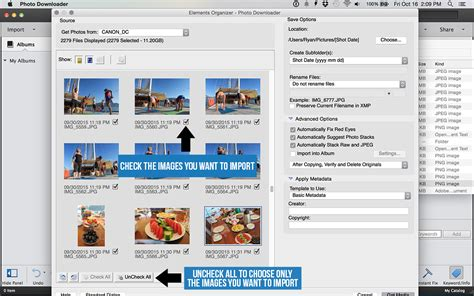 pattern photoshop import adobe photoshop elements how to organize and manage your