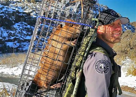 and fish nm february officer of the month new mexico department of