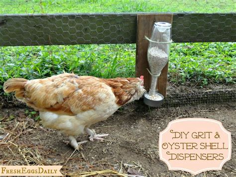 Backyard Chickens Grit 180 Best Images About Chicken Coops On Chicken