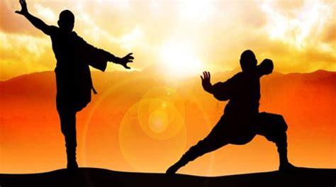 arti marziali interne bloodsport arti marziali interne ed esterne