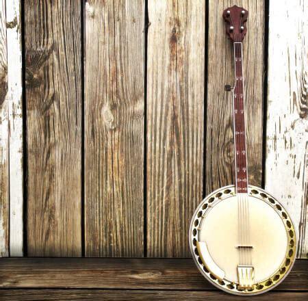 best banjo best banjo brands 10 best beginner banjo reviews the