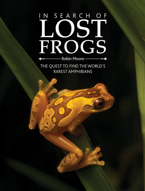 in search of lost pre order in search of lost frogs today