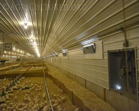 agricultural fans for barns ventilation in turkey barns