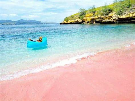 stunning pink beach  komodo indonesia  pics