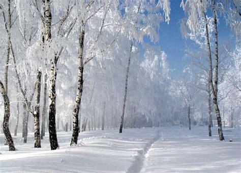 imagenes de paisajes con nieve fotos de paisajes nevados