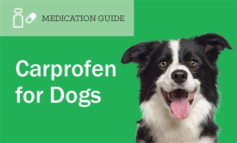 vetprofen for dogs carprofen for dogs