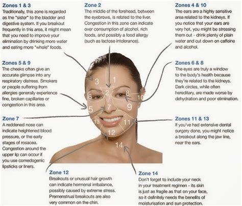 mapping acne lovely acne mapping what is your acne trying to tell you