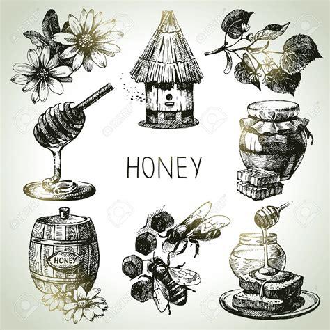 vintage illustration free vintage illustrations of bees honey free vintage