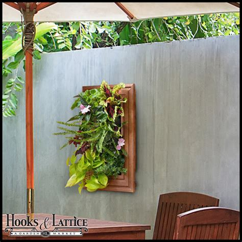 Green Wall Planters by Living Wall Planters Green Wall Systems Hooks Lattice