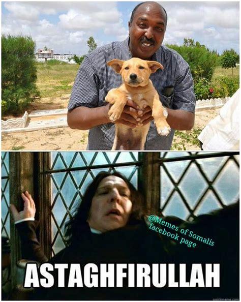 somali memes 28 images image funny somali memes
