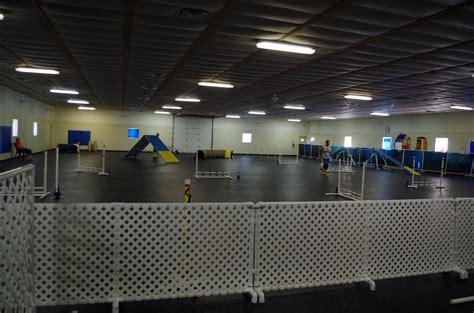 dog house ann arbor dogs jumping at northfield dog training ann arbor mi dog agility trials