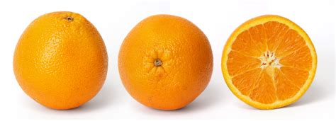 Fruity Orence archivo orange and cross section jpg la