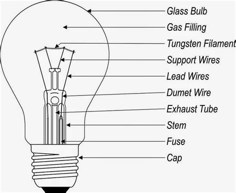 Parts Of A Light Bulb by Science Uses Of Light Bulbs And Their Structure