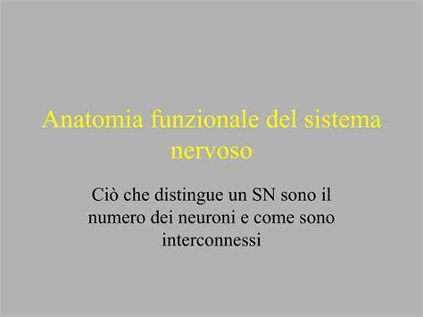 dispense fisiologia fisiologia delle emozioni dispense