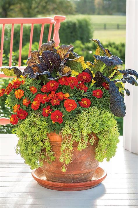 fall gardening ideas best 10 fall container gardening ideas on