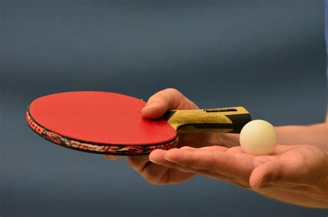 Of Table Tennis by Basic And Official Of Table Tennis Table Tennis Spot