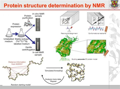 protein nmr welcome to the session of the ig structural biology ppt
