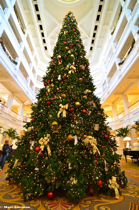 grand floridian christmas tree the grand floridian tree 1 memory maker