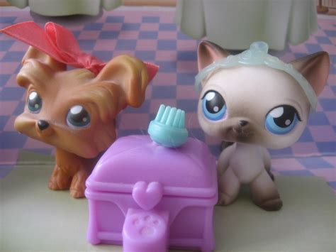 lps dogs and cats lps cat and by twilightberry on deviantart