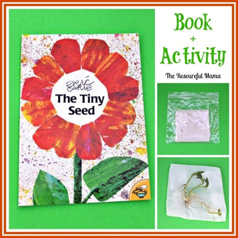 seeds of books sprouting seed activity for inspired by the tiny seed