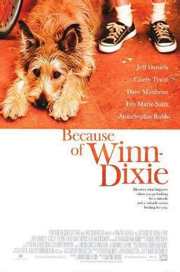 pictures of the book because of winn dixie because of winn dixie