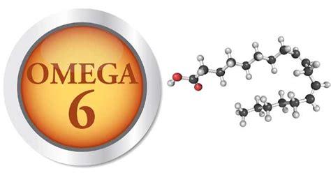 alimenti omega 6 omega 6 elementi essenziali per il corretto sviluppo di