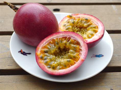 fruit de la recettes de fruit de la id 233 es de recettes 224 base