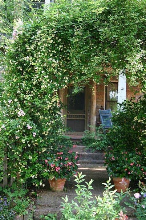 backyard vines scenes from the garden of ryan gainey