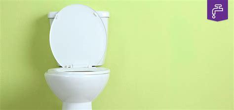 Blocked Toilet Blocked Toilet Safegas