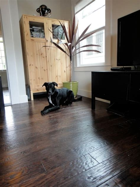 best hardwood floors for pets 22 best images about pets and flooring on