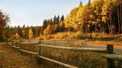 colored definition complex colored high definition background images autumn