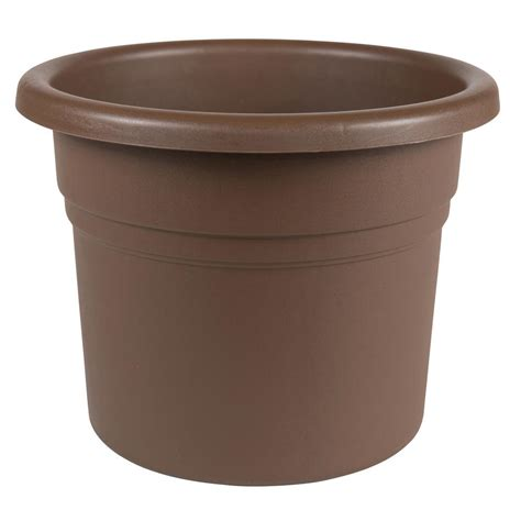 Planters Chocolate by Bloem Posy 16 In Chocolate Plastic Planter Pp1645 The