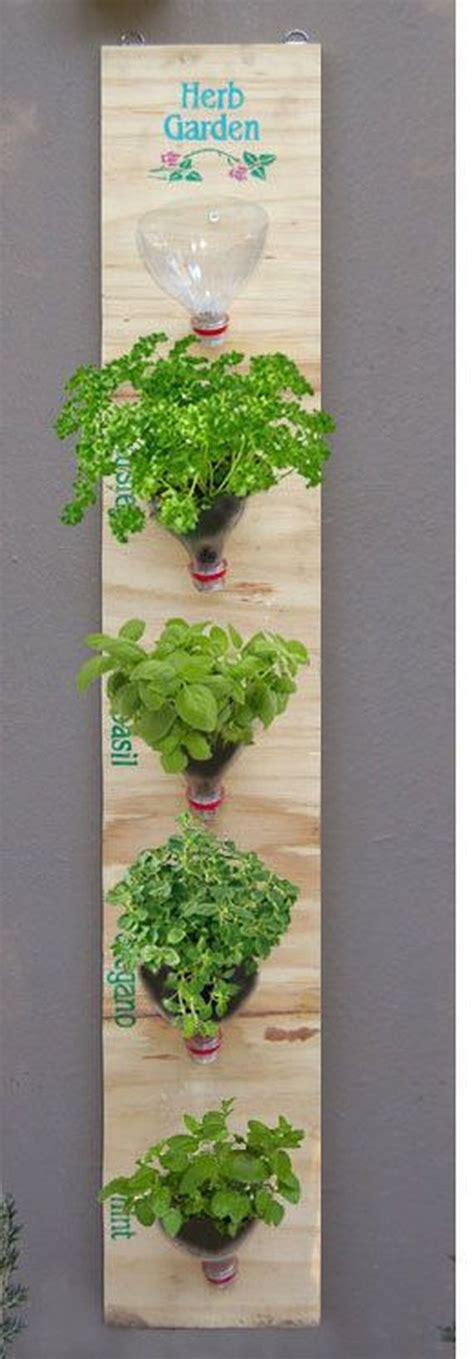 Diy Hanging Herb Garden | diy indoor herb garden ideas