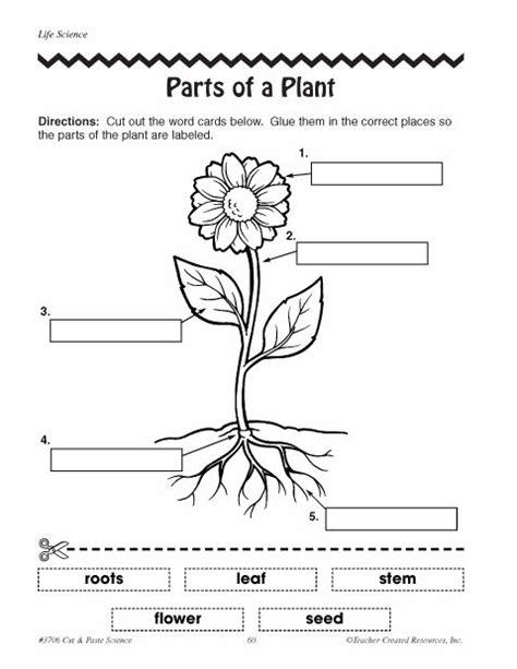 Galerry free printable plant worksheets