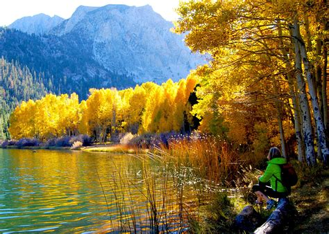 california fall color fall foliage tour a state by state guide to autumn travel
