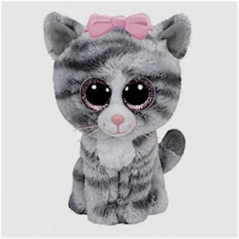 Cat Beanie Boos   2018 Funny Cats