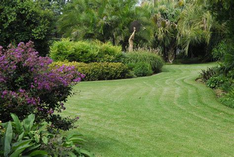 Gardening In August August In The Garden