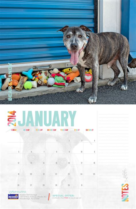 Sell Calendars For Charity Calendar Fundraising Idea For Animal Shelters Rescues