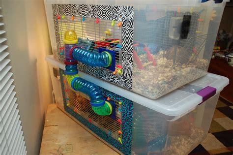 Bed Topper Walmart Diy Hamster Cage Bin Cage Hammy Happenings