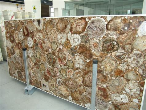 Fossil Countertops by Petrified Wood Fossil Salb Countertops Marble Wood Fossil Semiprecious Slabs Buy Marble