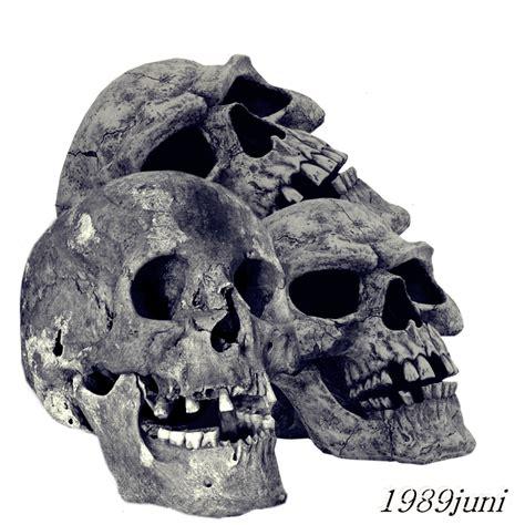 tattoo design skull png skull stock 1 by 1989juni on deviantart