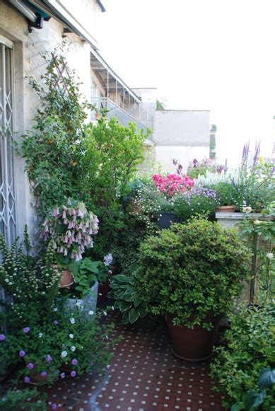 vasche per piante da terrazzo un terrazzo in citt 224 sguardo nel verde torino
