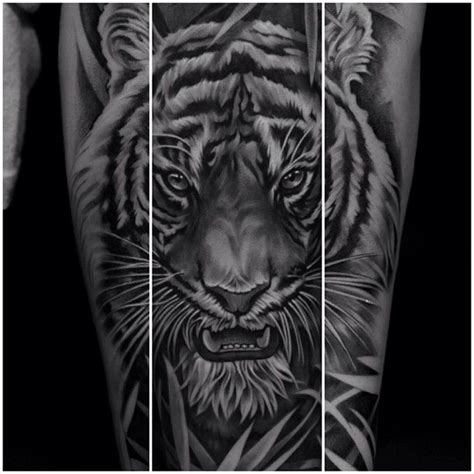 white tiger tattoo studio queenstown 79 best images about tattoo on pinterest david hale