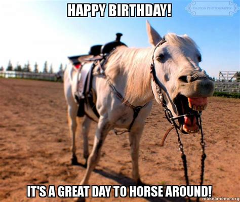Horse Birthday Meme - happy birthday horse meme memes