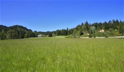 Yamhill County Property Records Lots And Land For Sale In Yamhill County Casa Real Estate Newberg