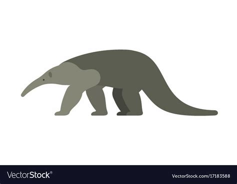 giant anteater royalty  vector image vectorstock