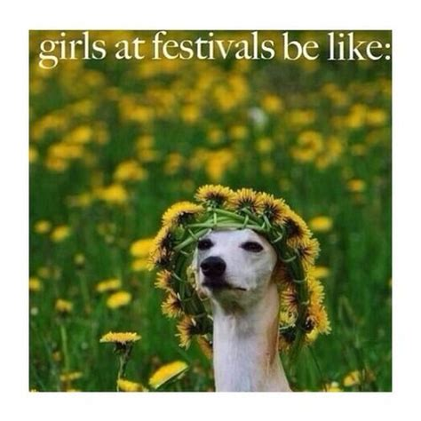 Festival Girl Meme - girls rave meme and festivals on pinterest