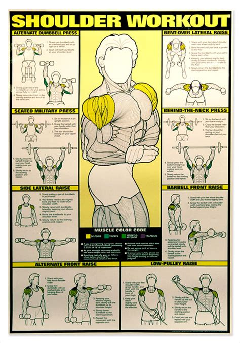 Shoulder Workout At Home by Shoulder Workout Chart Workout