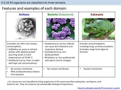 bioknowledgy presentation on 5 3 classification of